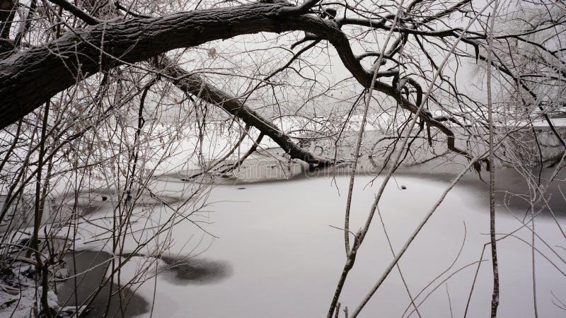 Invierno en el río imagen de archivo libre de regalías
