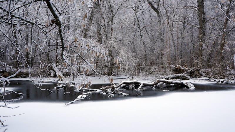 Invierno en el río fotos de archivo libres de regalías