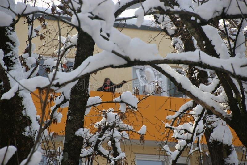 Invierno en el suburbio Ciudad de Salzburg, Austria fotos de archivo libres de regalías