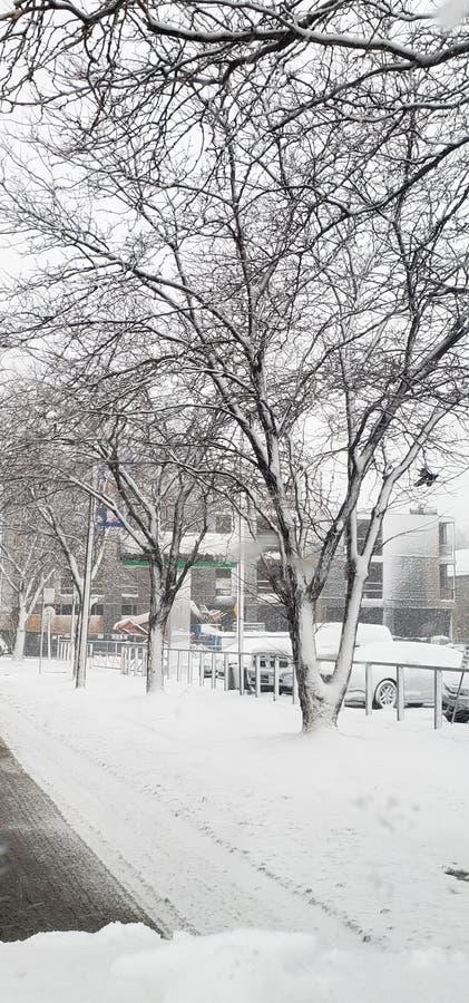 Invierno en el tiempo de congelación de Chicago foto de archivo