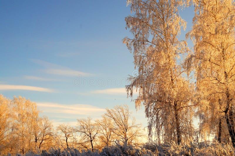 Invierno en el Ural imagen de archivo