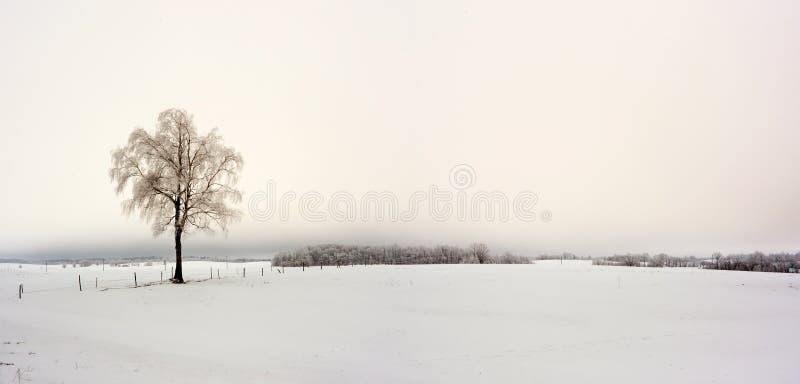 Invierno en Europa imagenes de archivo