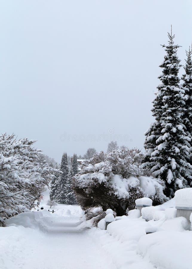 Invierno en Finlandia: Vista cubierta con nieve fotos de archivo