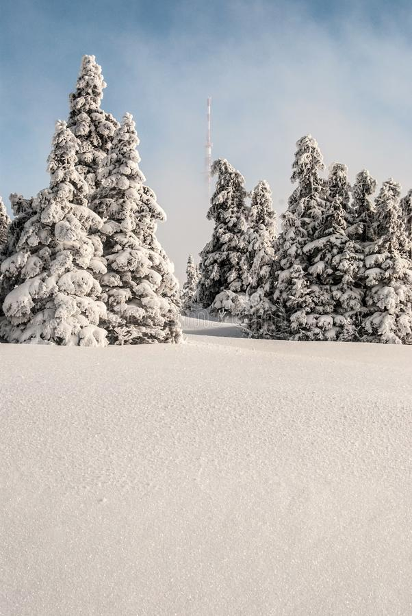Invierno en la colina de Praded en las montañas de Jeseniky en República Checa imagen de archivo