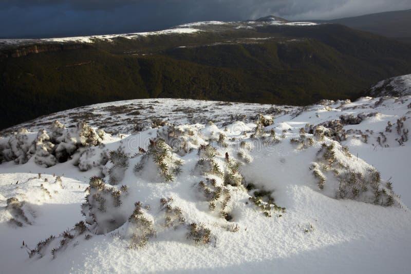 Invierno en la isla de Tasmania foto de archivo