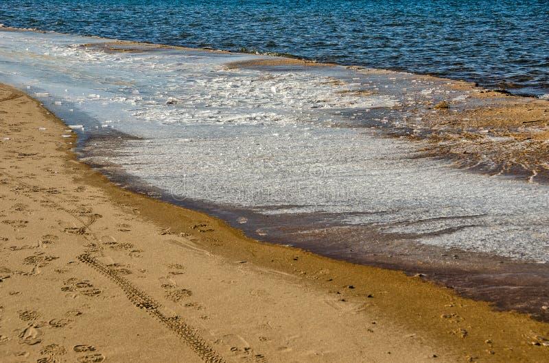 Invierno en la orilla del lago Michigan imagenes de archivo