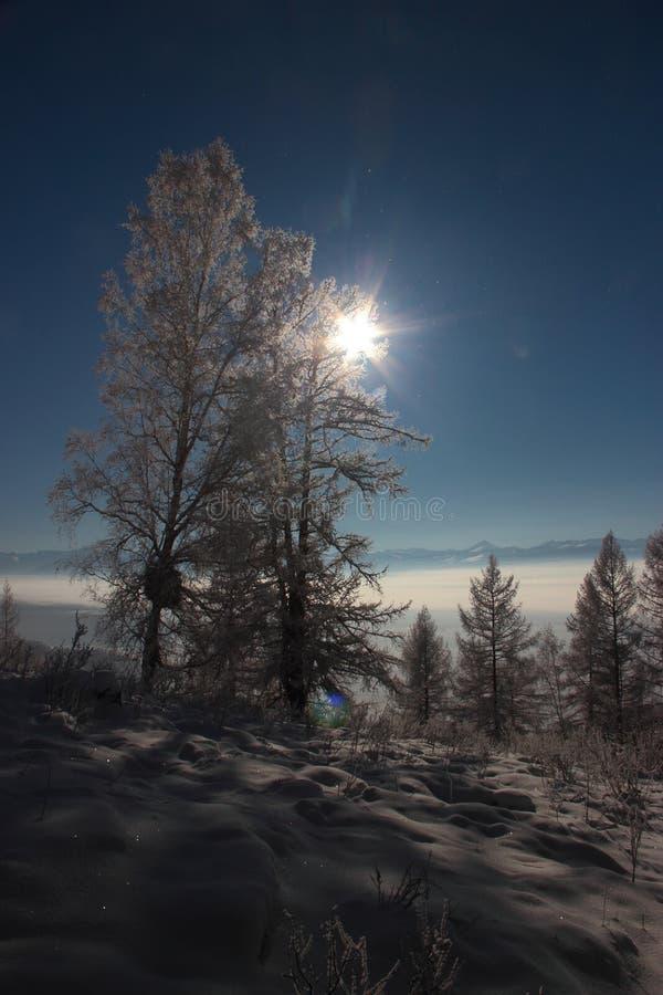 Invierno en las montañas de Altai fotos de archivo