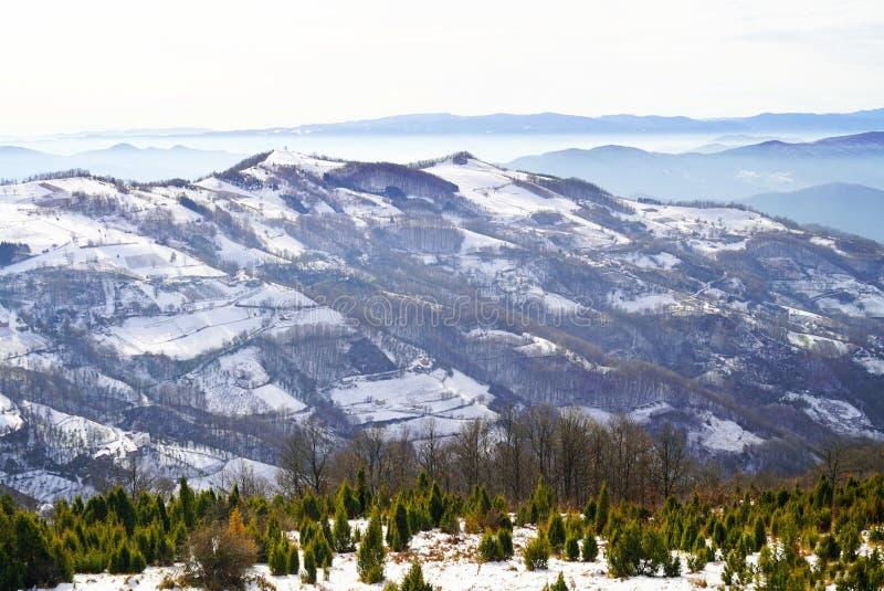 Invierno en las montañas de Serbia occidental fotografía de archivo