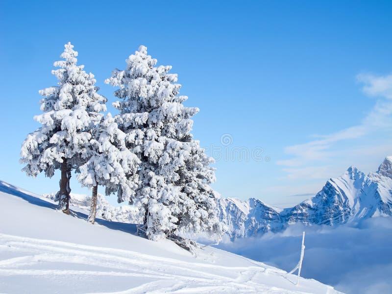 Invierno en las montan@as imagen de archivo