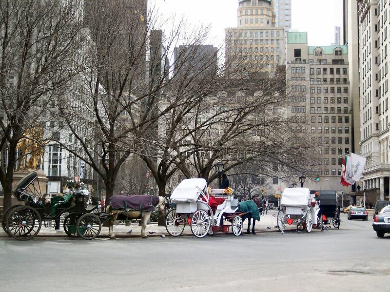 Invierno en NYC 8 fotografía de archivo libre de regalías