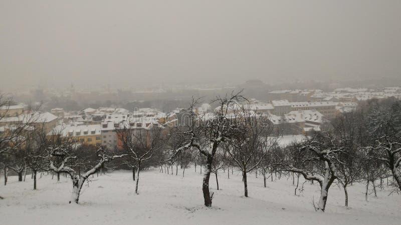 Invierno en Praga imagen de archivo libre de regalías