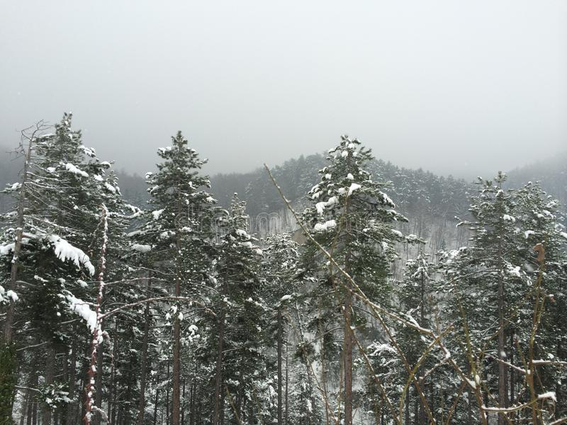 Invierno en Rasnov foto de archivo libre de regalías