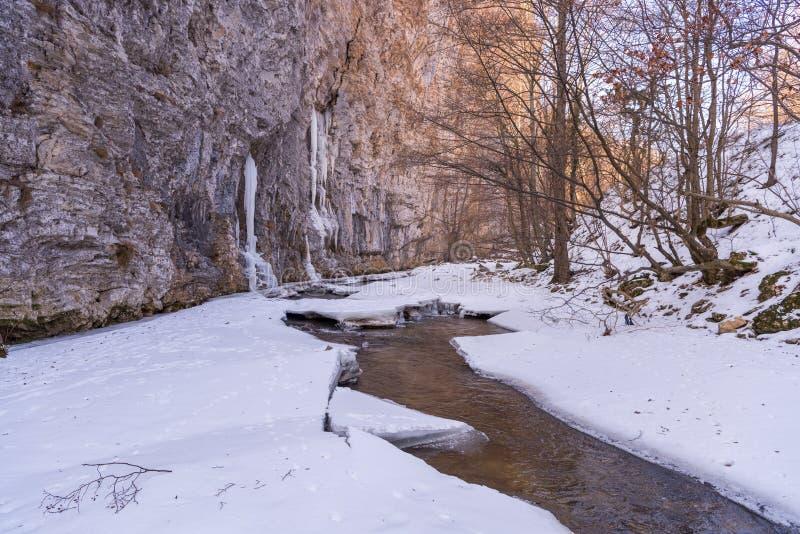 Invierno en Rumania foto de archivo libre de regalías