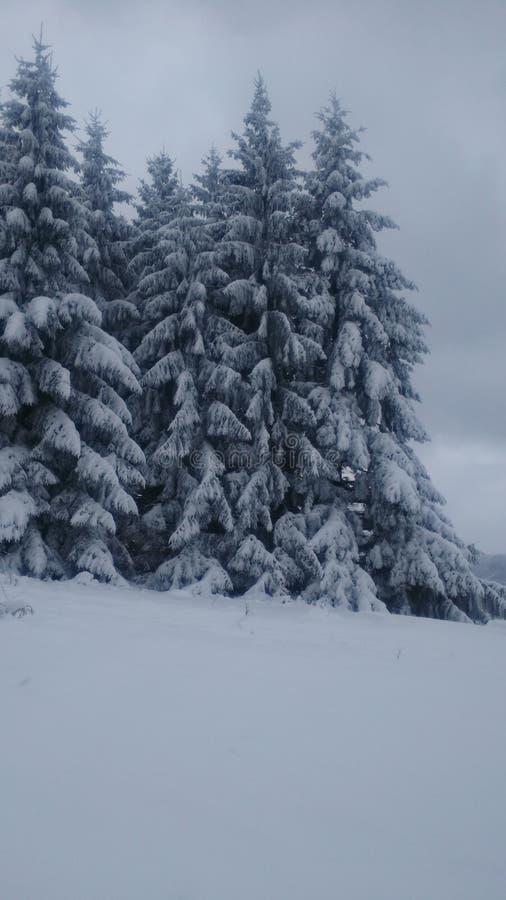 Invierno en Serbia fotos de archivo libres de regalías