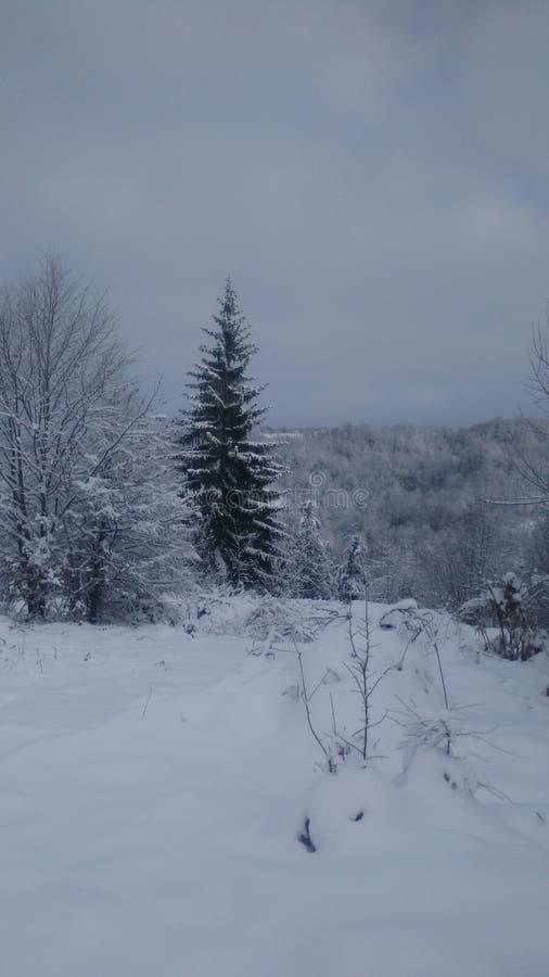 Invierno en Serbia foto de archivo