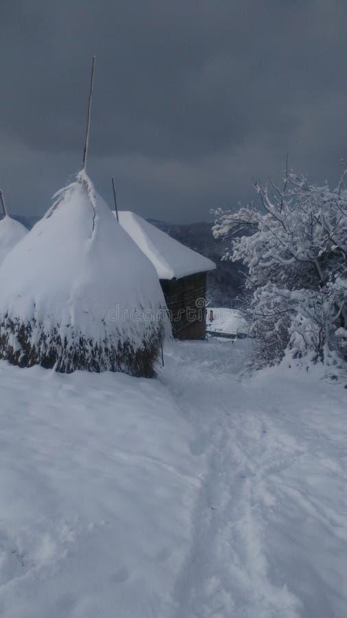 Invierno en Serbia fotos de archivo