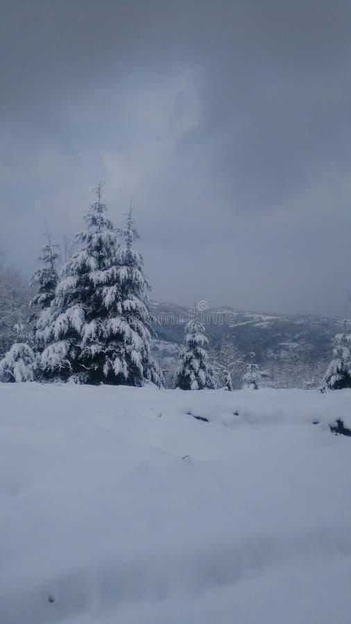 Invierno en Serbia foto de archivo libre de regalías