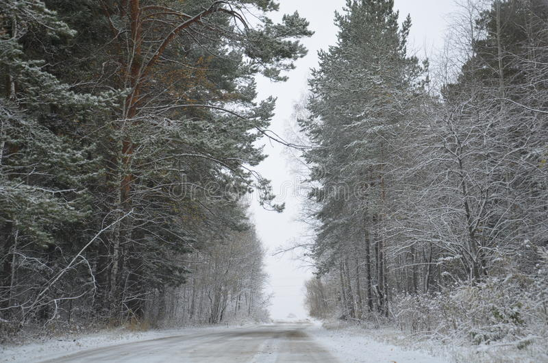 Invierno en Siberia foto de archivo