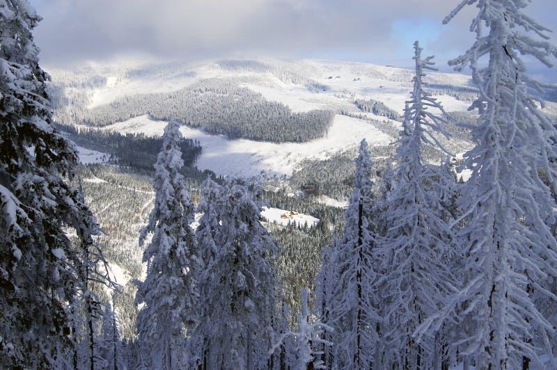 Invierno en Spindlerov Mlyn imagen de archivo