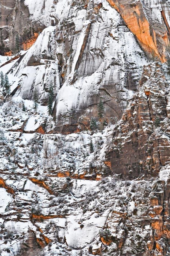 Invierno en Zion NP imagen de archivo
