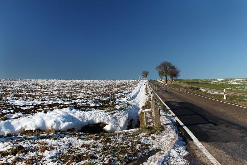 Invierno Mañana escarchada del invierno de los campos nevados fotos de archivo libres de regalías