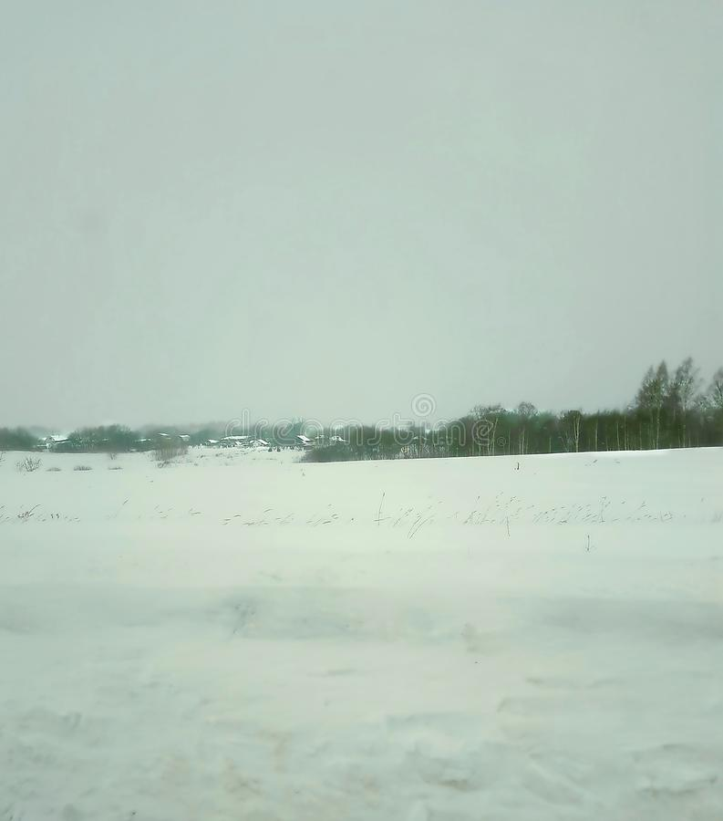Invierno, paisaje, nieve, árbol, bosque, cielo, naturaleza, horizonte, día, hielo, frío, helada foto de archivo libre de regalías