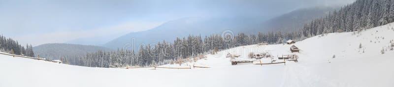 Invierno, panorama, bosque foto de archivo