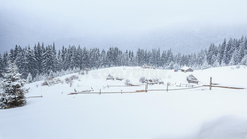 Invierno, prados, nieve, derivas foto de archivo libre de regalías