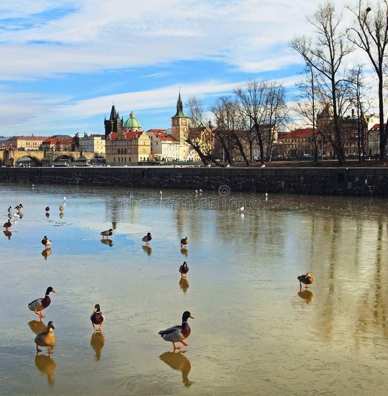 Invierno Praga imagenes de archivo