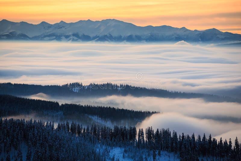 Invierno que emigra las montañas Rysianka de Beskidy fotografía de archivo