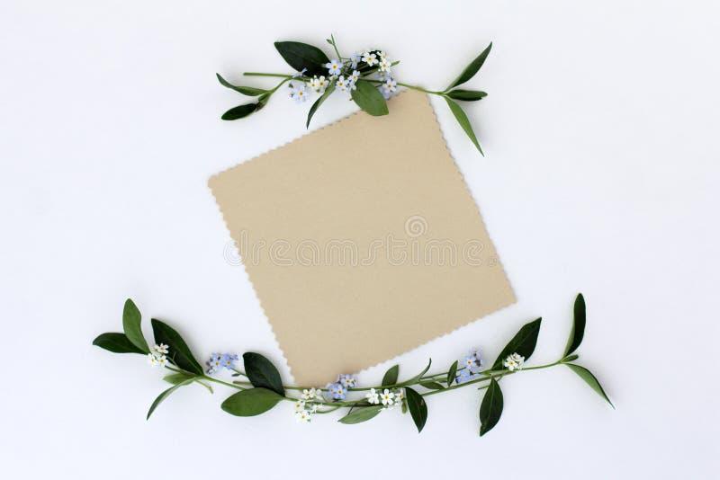 Invitación congratulatoria de la tarjeta stock de ilustración