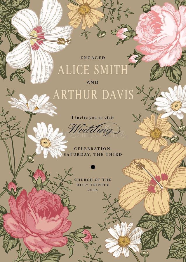 Invitación de la boda Malva hermosa del hibisco de Rose de la manzanilla de las flores ilustración del vector
