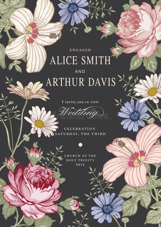 Invitación de la boda Malva hermosa del hibisco de Rose de la manzanilla de las flores Tarjeta de felicitación de la vendimia Cap ilustración del vector