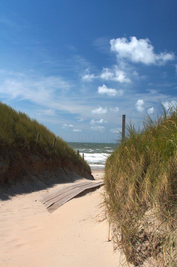 Invitación de la playa fotos de archivo libres de regalías