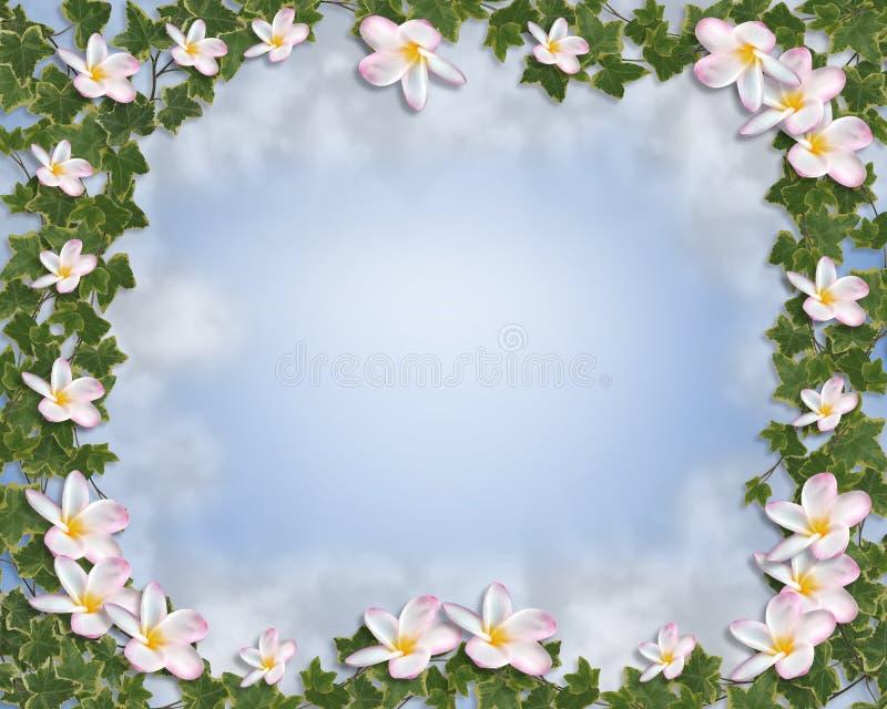 Invitación floral de la hiedra y de la frontera del Plumeria ilustración del vector