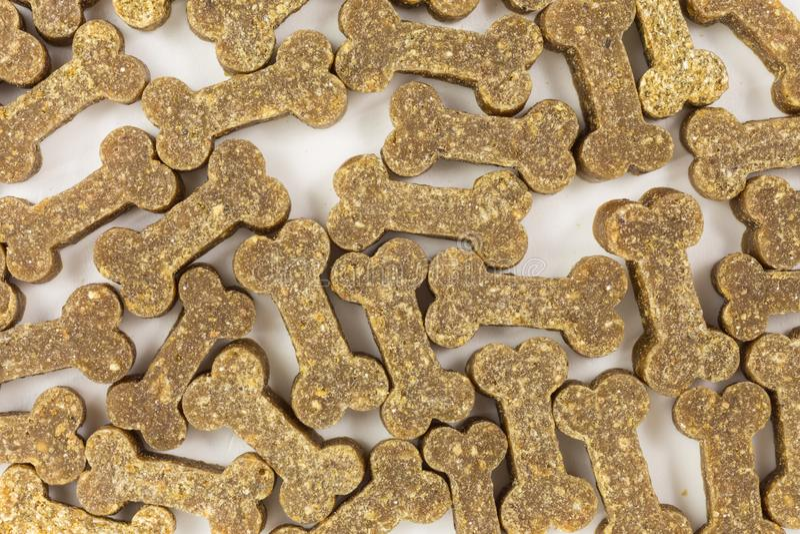 Invitaciones del perro en la forma de los huesos fotos de archivo