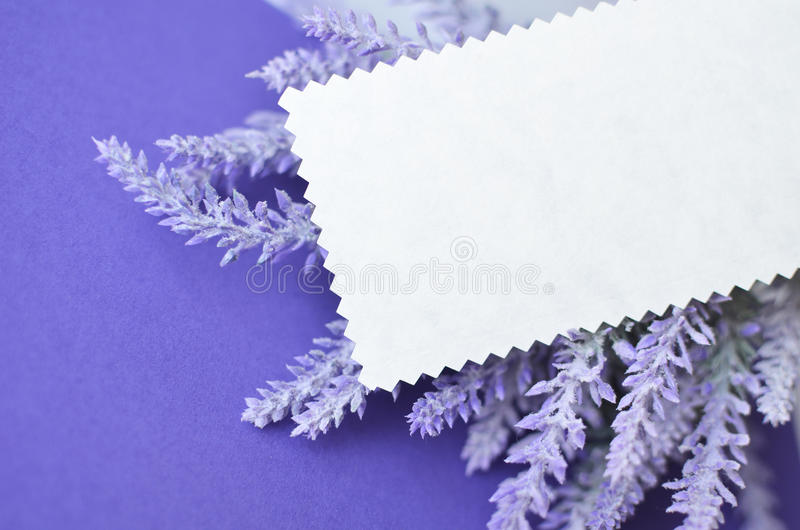 Invitation card with empty space for text on lavender background download invitation card with empty space for text on lavender background stock image image of stopboris Images