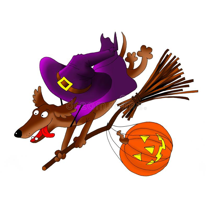 Invitation card on Halloween. Dachshund on a broomstick with a pumpkin and a costume. Digital - download and print royalty free stock photography