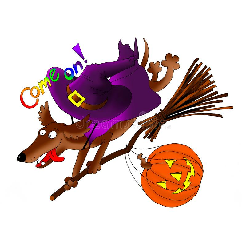 Invitation card on Halloween. Dachshund on a broomstick with a pumpkin and a costume. Digital - download and print stock image