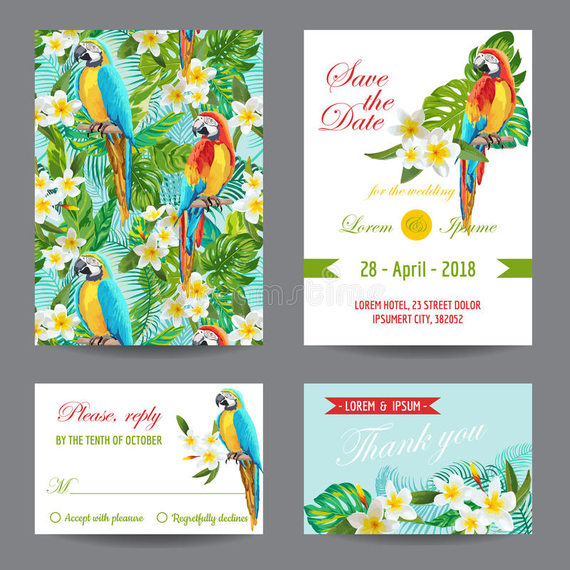 Invitation or Greeting Card Set - Tropical Birds and Flowers Design vector illustration