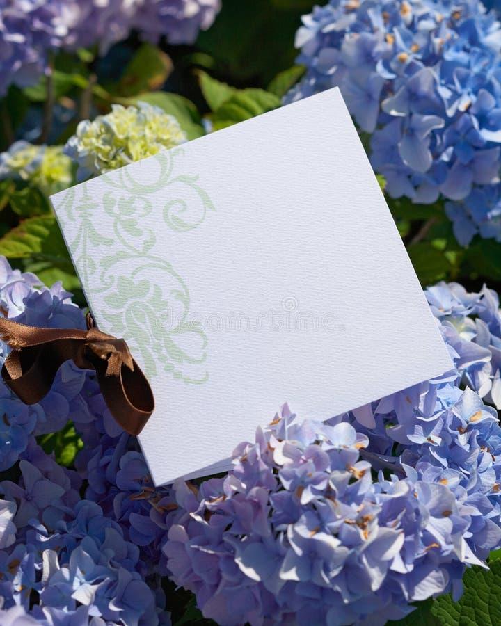 Invito di cerimonia nuziale immagini stock