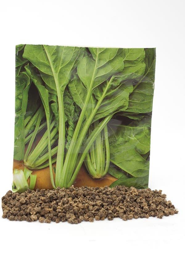 Involucro orticolo e semi di erbe conifere fotografia stock