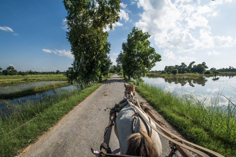 Inwa Myanmar fotos de archivo