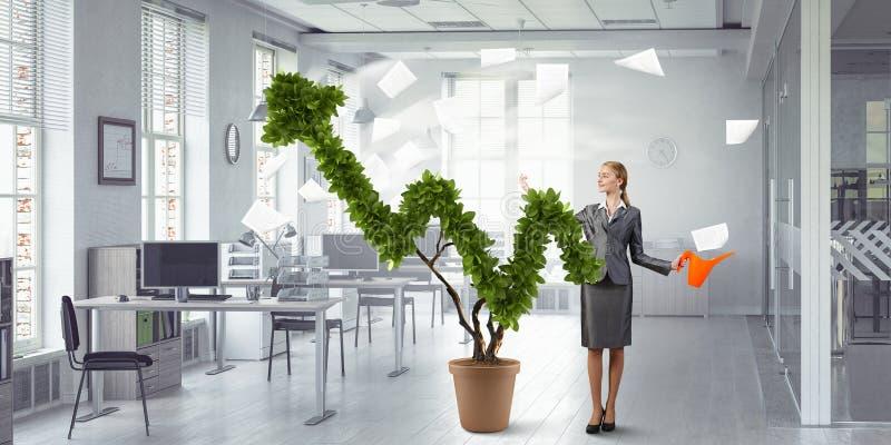 Inwestuje wzrastać twój dochody Mieszani środki fotografia stock