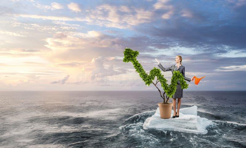 Inwestuje wzrastać twój dochody Mieszani środki obrazy stock