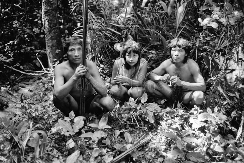 Inwoners Indiërs Awa Guaja van Brazilië royalty-vrije stock afbeeldingen