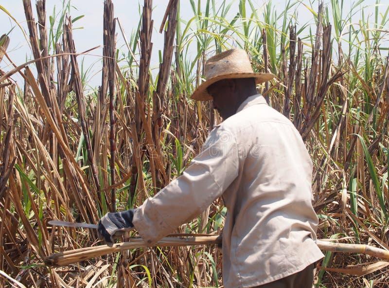Inwoners van Cuba stock afbeelding