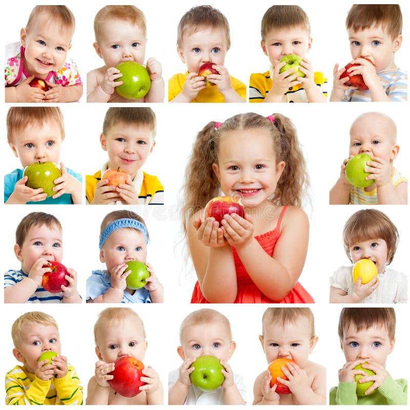 Inzameling van babys en jonge geitjes die appelen eten stock foto's