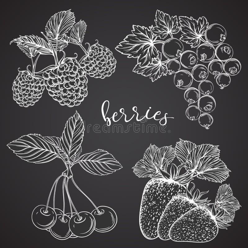 Inzameling van bessen op bord Aardbeien, kersen, bessen, frambozen Witte achtergrond vector illustratie