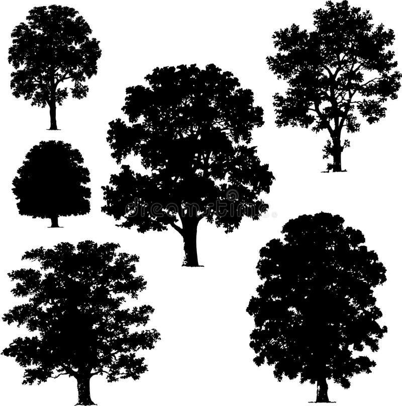 Inzameling van boomvectoren stock fotografie